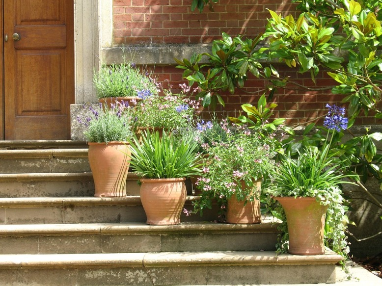 pots-on-steps[1].jpg